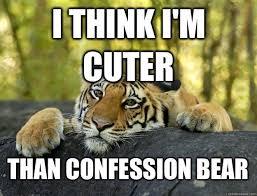 Confession Bear Meme - image 724352 terrible tiger know your meme