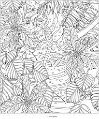 535 coloring images coloring book