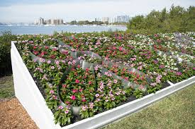 List Of Botanical Gardens Selby Makes List Of Top 10 Botanical Gardens In U S Sarasota