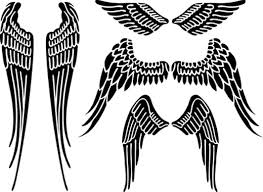 collection of 25 simple wings design