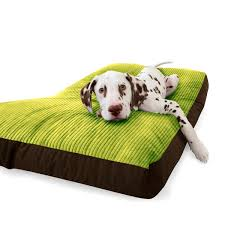 Petsmart Dog Bed Bedroom Knockout Indestructible Dog Bed Amazon Large Best