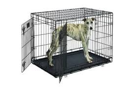 Truck Bed Dog Crate The Best Dog Crate Wirecutter Reviews A New York Times Company