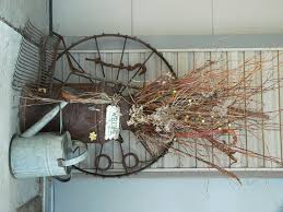 old iron wheel rake and watering can with a dried arrangement in
