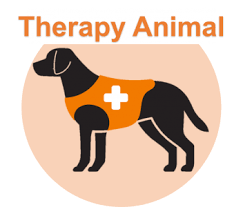 Comfort Dog Certificate Emotional Support Animal Esa Register Service Therapy Dog Therapetic