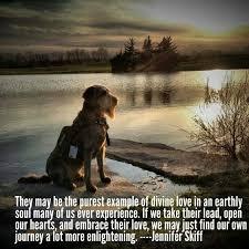 boxer dog sayings 485 best bux images on pinterest