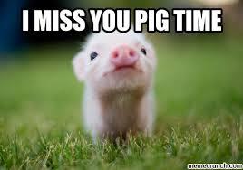 I Miss U Meme - miss you pig time