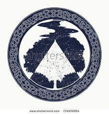 celtic tree of life stock images royalty free images u0026 vectors