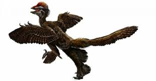 two wings or four researchers uncover evidence birds had