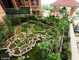 terrace gardening veteran builds scale map of china in his terrace garden