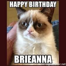 Grumpy Cat Meme Generator - grumpy cat meme generator birthday mne vse pohuj