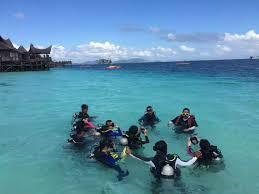 diving in mabul macro paradise sdc lodges