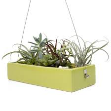 ragna hanging planter chive products llc