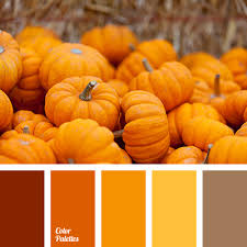 bright orange color pumpkin color palette halloween dark