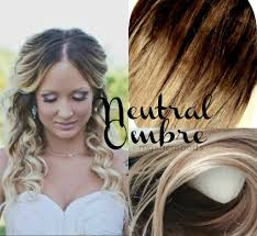 Very Cheap Clip In Hair Extensions by Mystic Moods Neutral Ombre Hair Extensions Accepting Custom Orders