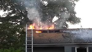 I Tried Killing A Spider - man sets seattle washington house on fire trying to kill spider