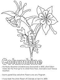 State Flower Of Colorado - columbine coloring page