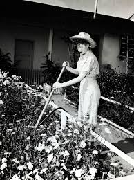lucy ball a rare glimpse into life at home with lucille ball lucille ball