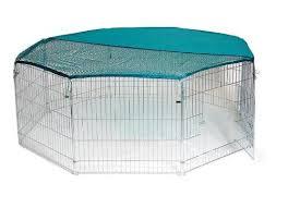 Rabbit Hutch Indoor Large 66 Best Indoor Rabbit Cage Uk Images On Pinterest Guinea Pigs