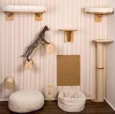 the 25 best cat wall ideas on pinterest cat wall shelves diy