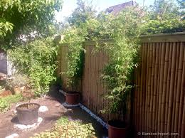 bamboo fence roll 180 x 180 cm