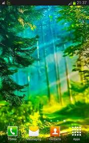 forest hd apk free forest hd live wallpapers apk free personalization app