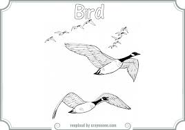 coloring pages of animals that migrate bird migration coloring pages printable coloring pages coloring