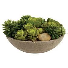terrarium faux plants u0026 trees joss u0026 main