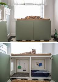 Create Your Own Toy Box by Best 25 Cat Litter Boxes Ideas On Pinterest Hidden Litter Boxes