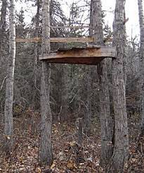 How To Make A Duck Blind Bear Baiting Tree Stands U0026 Ground Blinds Hunter Education