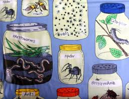 bugs fabric bugs in a jar material cotton fabric sewing fabric