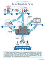 Characterization Genome Characterization Pipeline Center For Cancer Genomics