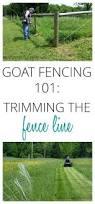 best 25 goat fence ideas on pinterest goat pen goat hay feeder