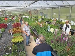 native plant symposium and plant events dyck arboretum