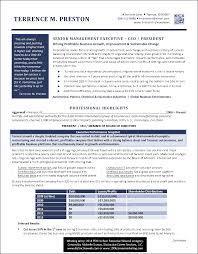 Sample Resume Of Ceo Interesting Award Winning Resumes 3 Ceo Sample Resume Resume