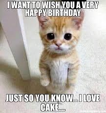 Birthday Cake Dog Meme - birthday cake memes qsoft info