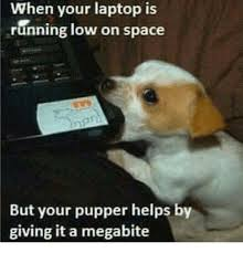 Laptop Meme - when your laptop is running low on space but your pupper helps by