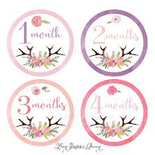 flower of the month baby month stickers flower antler stickers leen the graphics