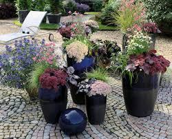pflanzen f r balkon das grüne medienhaus pflanzen im herbst herbstzauber für garten