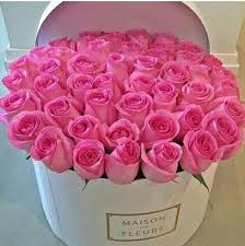 Meaning Of Pink Roses Flowers - 54 best flowers images on pinterest flower boxes flower