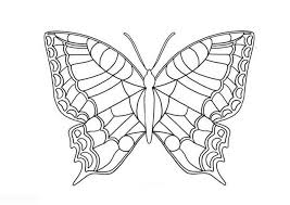 butterfly coloring pages butterfly coloring pages coloring sheet