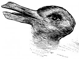 duck rabbit 100 optical illusion