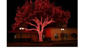 johnson city texas christmas lights are you ready for the 25th annual lights spectacular hill country sty