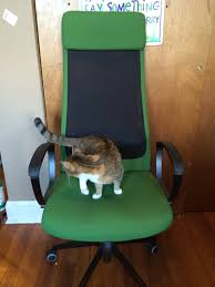 office chair help off topic discussion forum