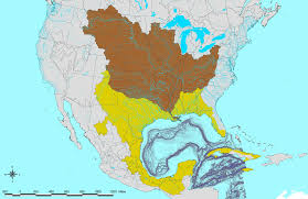 Elevation Map Of United States by Profantasy U0027s Map Making Journal Blog Archive The Rules Of Rivers