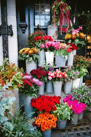 garden of eden flower shop best 25 florists ideas on pinterest flower bouqet bouquet