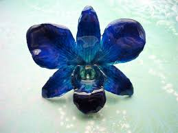 resin flower necklace images Real orchid flower necklace cobalt blue real orchid flower jpg