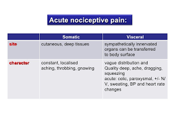 Visceral Somatic Reflex Pain