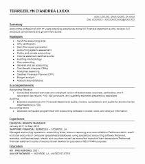 Summary Statement For Resume Best Branch Manager Resume Example Livecareer