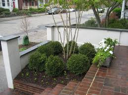 interesting small courtyard garden design with symetrical front