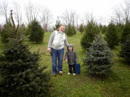 Christmas Tree Farm Va - 2304 miles christmas tree farms old stone farm and evergreen acres